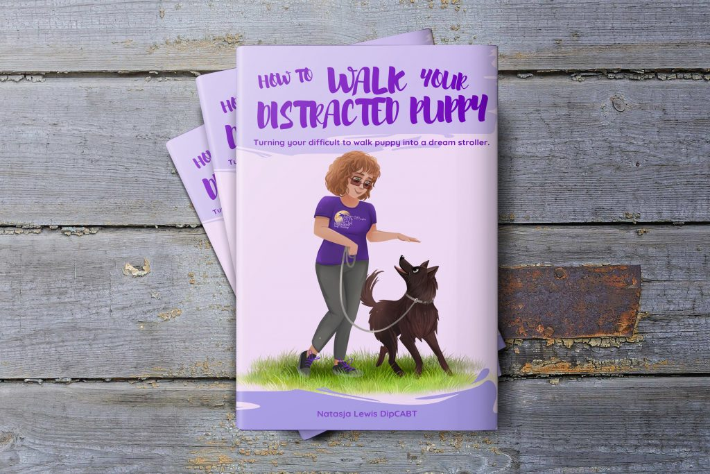 How to walk your distracted puppy ebook
