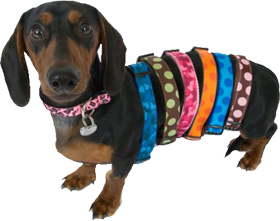 Walk-e-woo Dog Collars